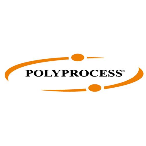 Polyprocess